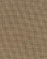 Brown Print Studio Outdoor Fabric  Pitta Brown Sugar