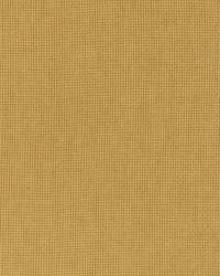 Beige Print Studio Outdoor Fabric  Pitta Chamois