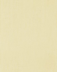 Pitta Neutral by