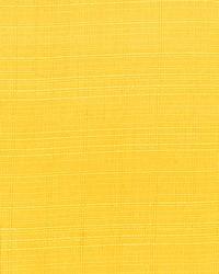 Yellow Print Studio Outdoor Fabric  Parrot Lemon