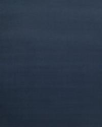Blue Print Studio Outdoor Fabric  Parrot Navy