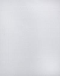 White Print Studio Outdoor Fabric  Parrot Bright White