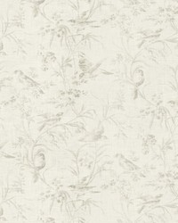 White French Country Toile Fabric  Aviary Toile Blanc