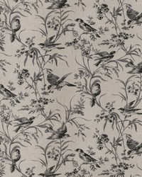 French Country Toile Fabric  Aviary Toile Coal