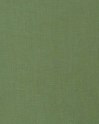 Brackett Grass by