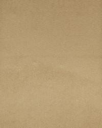 Brown Solar Sheen Volume II Fabric  Solar Sheen Wheat