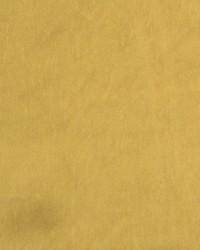 Gold Solar Sheen Volume II Fabric  Solar Sheen Gold