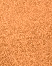 Zinc Oxide Copper by