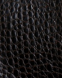 Zirconium Steel Coffee by