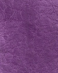 Copper Penny Metallic Violet by