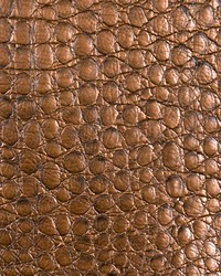 Zirconium Alloy Bronze by
