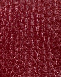 Zirconium Alloy Lacquer by