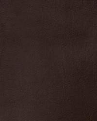 Brown Faux Leather Studio Fabric  Bronze Chocolate
