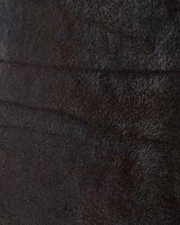 Bronze Chestnut by
