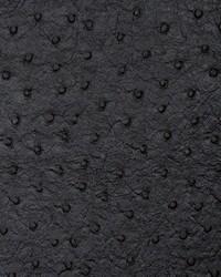 Tellurium Onyx by