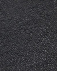 Black Faux Leather Studio Fabric  Chemical Onyx