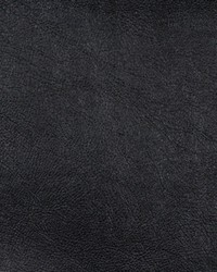 Black Faux Leather Studio Fabric  Pewter Onyx