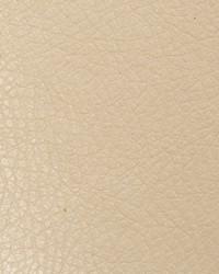 Oxide Parchment by