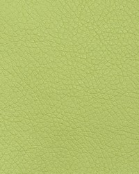 Green Faux Leather Studio Fabric  Oxide Limeade