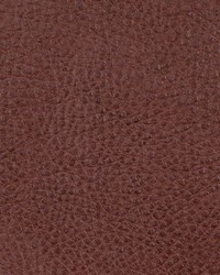 Faux Leather Studio Fabric  Oxide Ginger