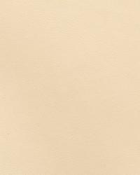 Zinc Parchment by