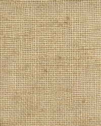 Clifton Seagrass by