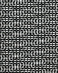 Black Chromatics Vol XXIII Fabric Fabricut Fabrics Tradition Domino