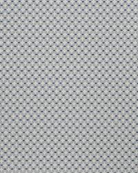 Silver Chromatics Vol XXIII Fabric Fabricut Fabrics Tradition Royal Silver