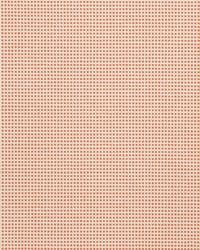 Orange Color Studio Vol VI Fabric Fabricut Fabrics Chickpea Coral