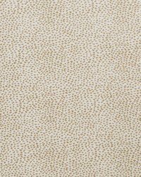 Color Studio Vol VI Fabric Fabricut Fabrics Soft Spot Almond