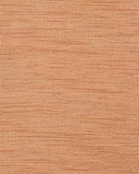 Color Studio Weaves Fabric Fabricut Fabrics Stimulus Apricot