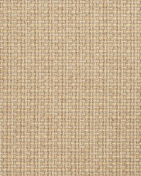 Color Studio Weaves Fabric Fabricut Fabrics Bloomfield Desert
