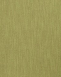 Green Monterey Fabric  Monterey Fern