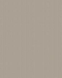 Brown Chromatics Vol XXIII Fabric Fabricut Fabrics Rumali Driftwood