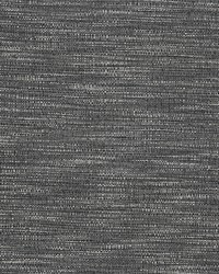Chromatics Vol XXIII Fabric Fabricut Fabrics Kamini Licorice