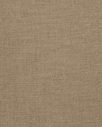 Clear Thinking Taupe by