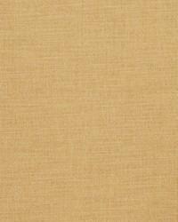 Yellow Vignettes Vol XIV Fabric Fabricut Fabrics Clear Thinking Sunlight