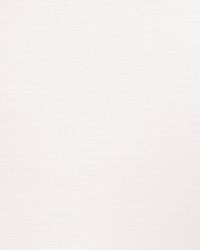 Lochte White by