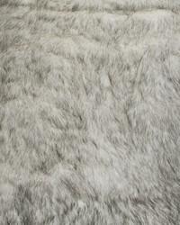 Polar Fur Black & White by