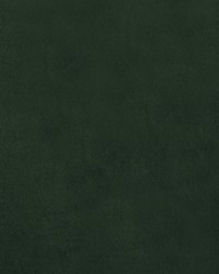 Como Velvet Cypress by
