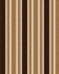 Color Studio Chenilles III Fabric  Casa Stripe French Roast