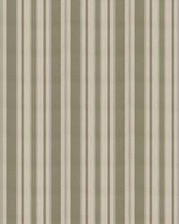 Tivoli Cypress by