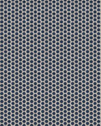 Pindot Navy by