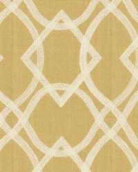 Fabricut Fabrics Residence Curry Fabric