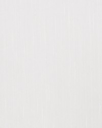 Beige Sheer Essentials Vol III Fabric  Snowfall Ivory