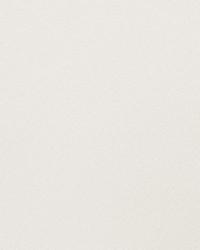 Beige Sheer Essentials Vol III Fabric  Rocky Texture Ivory