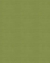 Green Kendall Wilkinson Fabric  Parker Pleat Grass