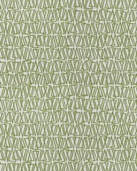Kendall Wilkinson Fabric  Maggie Reed