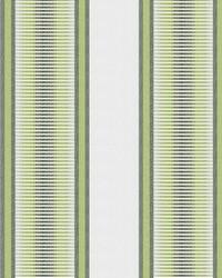 Green Kendall Wilkinson Fabric  Sunset Stripe Grass