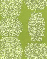 Green Kendall Wilkinson Fabric  Beaded Batik Lime